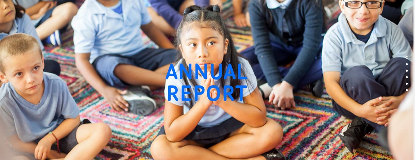 View our Annual Report